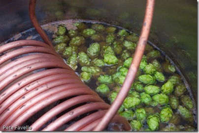 Hops In The Boiler